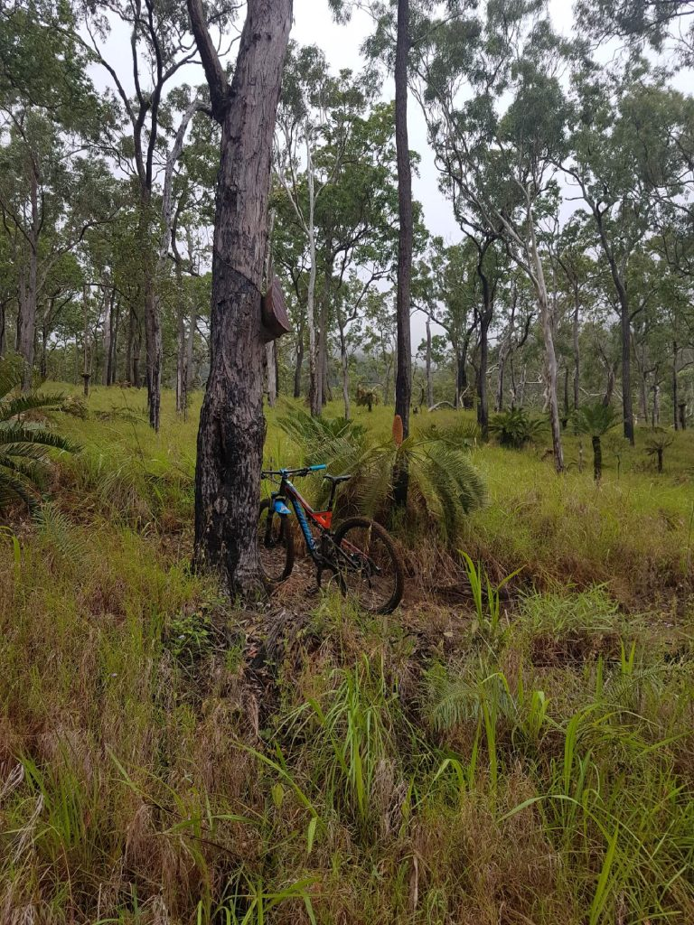 Atherton Bike Hire Atherton Tablelands Mountain Bikes and Bicycle Hire 20170203_072840_resized