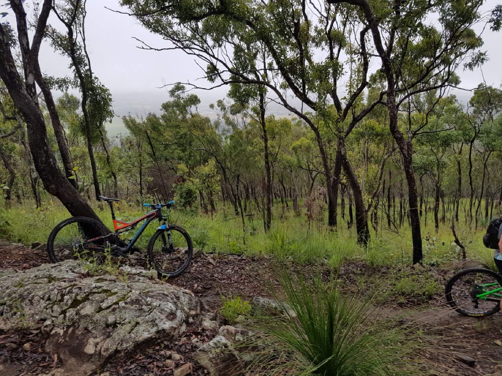 Atherton Bike Hire Atherton Tablelands Mountain Bikes and Bicycle Hire Bandy Bandy 16427